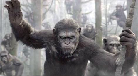 """Un trailer pour """"La Planète des singes : l'affrontement"""" !!!"""