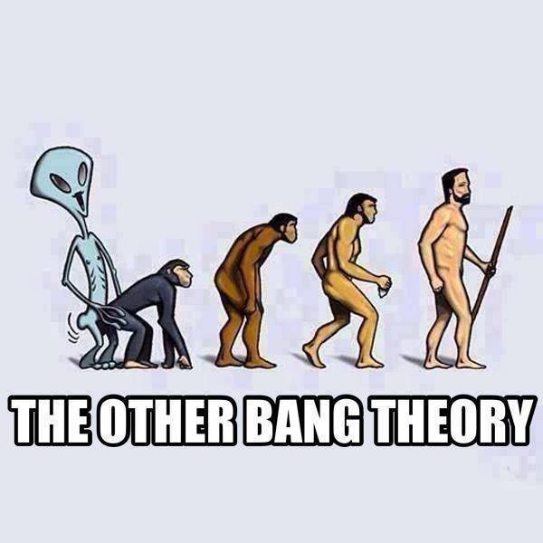 theory evolution