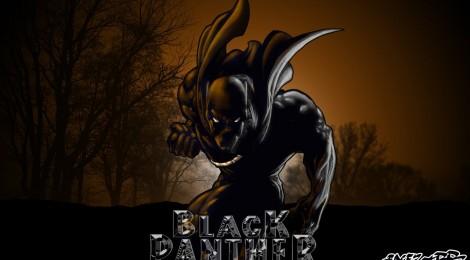 Qui est Black Panther?