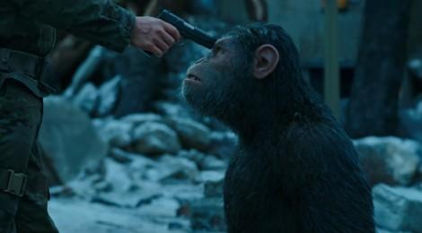 La Planète des singes - Suprématie : le trailer !